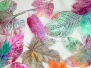 Μεταξόχαρτα με αληθινά πέταλα λουλουδιών