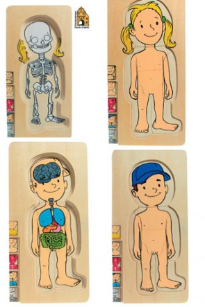 Puzzle ξύλινο ανατομίας